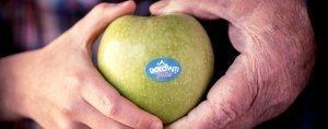 Frutta di qualità per i succhi di Dolomiti Fruits