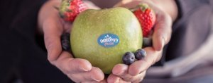 Dolomiti Fruits frutta per passione